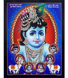 Buy Krishna Poster