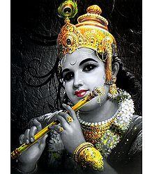 Krishna as a King of Dwarka