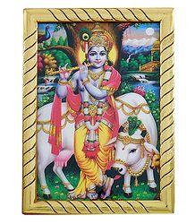 Murlidhar Krishna - Table Top Picture