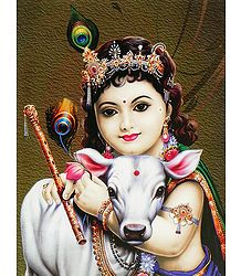 Gopala Krishna  - Card Paper Poster