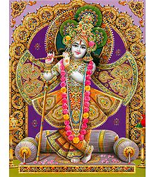 Lord Krishna in Rajvesh