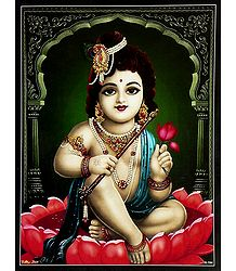 Krishna Sitting on Lotus - Poster