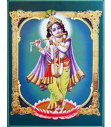 Lord Krishna - Online Shop