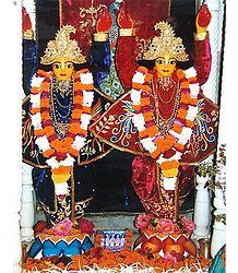 Nitai Gaur - Photo Print