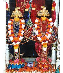 Nitai Gaur