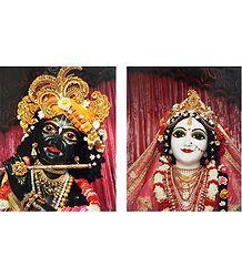 Radha Krishna - Shop Online Photographic Print