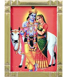 Radha Krishna with Cow - Framed Picture
