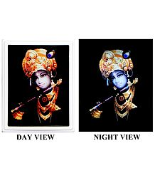 Murlidhara Krishna Plug-on Night Lamp with Adaptor