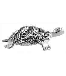 Carved Tortoise - White Metal Sculpture