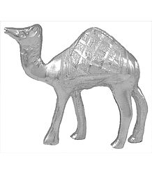 White Metal Camel