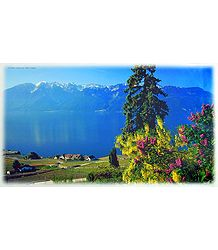Lake Geneva - Switzerland Poster