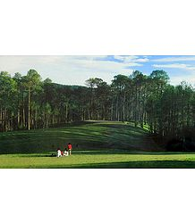 Golf Course, Ranikhet - Uttarakhand, India - Photo by Dhirendra Singh Bisht