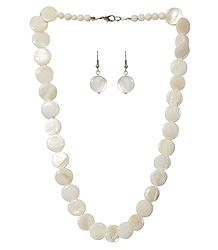 Shell Necklace in Ivory Color