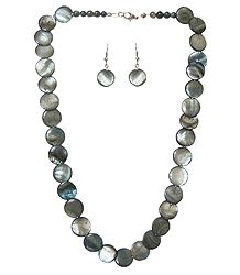 Shell Necklace in Grey