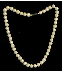 Synthetic Pearl Bead Necklace