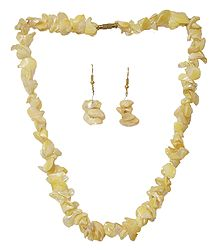 Shell Necklace in Yellow