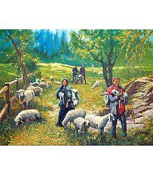 Himachali Shepherds