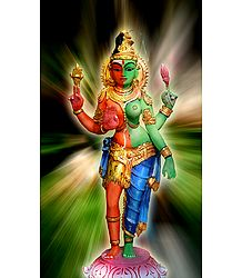 Ardhanarishvara - Shiva and Shakti - Photo Print