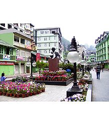 M.G Road Market During Spring, Gangtok - Photo Print