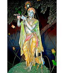 Lord Krishna - Photographic Print