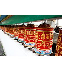 Prayer Wheels at Rumtek Monastery -  East Sikkim, India - Photo Print