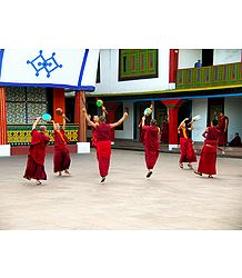 Monks at Rumtek Monastery - East Sikkim, India - Photo Print
