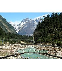 Foot Bridge to Yumthang Hotspring - North Sikkim, India