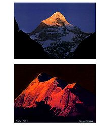 Himalayan View Postcards