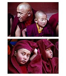 Buddhist Monks from Leh - 2 Postcards