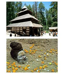 Hadimba Temple, Himachal Pradesh and Portrait of Sadhu - Set of 2 Postcards