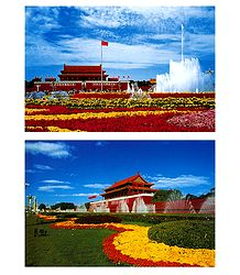 Tian Anmen Square, China - Set of 2 Postcards