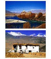 Stakna Monastery and Village House, Ladakh