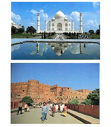 Taj Mahal and Agra Fort Pictures