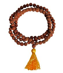 108 Rudraksha Beads Japamala