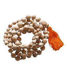 108 Tulsi Beads Japamala