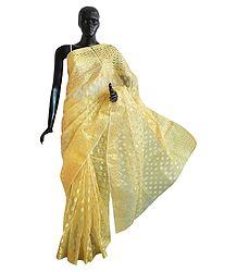 Light Golden Banarasi Tissue Saree with Border and Pallu
