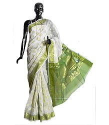 Weaved Golden Design All-Over on White Chanderi Saree with Green Border and Pallu