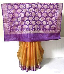 Orange Tussar Silk Saree with Light Purple Border and Pallu with Weaved Silver Work