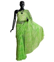 Printed Green Chiffon Saree