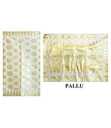 Zari Design on Ivory Cotton Tangail Dhakai Saree