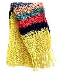 Light Yellow Scarf with Multicolor Border
