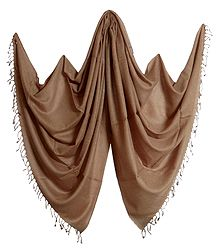 Light Brown Kullu Pashmina Shawl from Himchal Pradesh