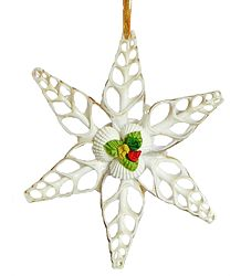 Carved Shell Star - Wall Hanging