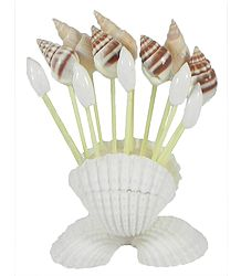 Shell Toothpick Holder with Toothpicks