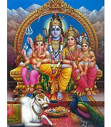 Lord Shiva - Shop Online