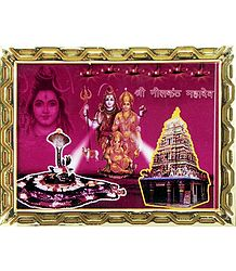Neelkanth Mahadev - Framed Picture