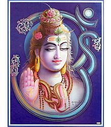 Shiva on Om