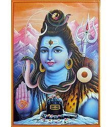 Buy Shiva in Abhaya Mudra