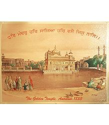 Buy Golden Temple - Metallic Paper Poster