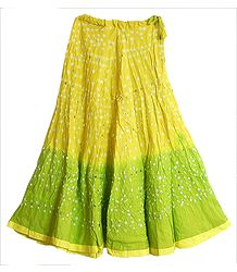 Light Yellow with Light Green Tie and Dye Skirt with Sequins